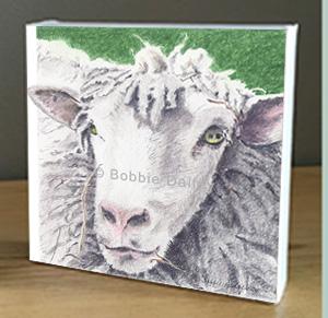 His Sheep