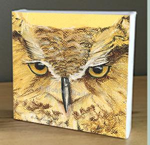 Raptor Center Owl