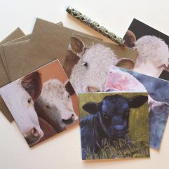 Cow Note Cards