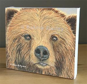 Bear Face – Art Print