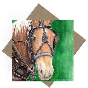 Bob the Horse